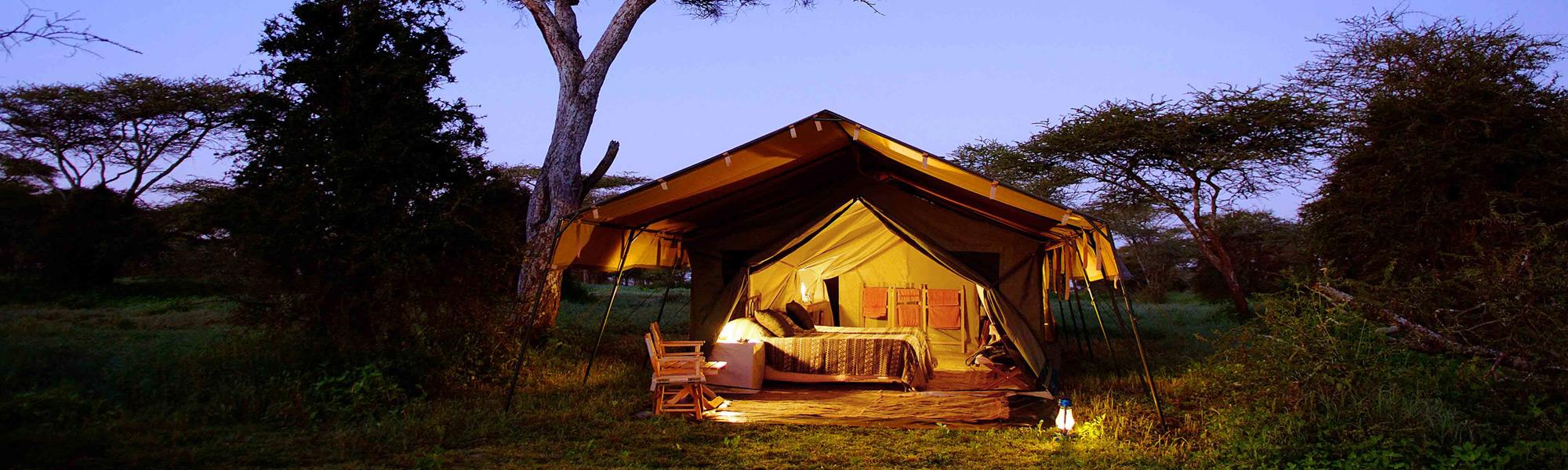 camp-at-night